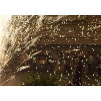 В Индии жертвами взрыва на фабрике фейерверков стали семь человек